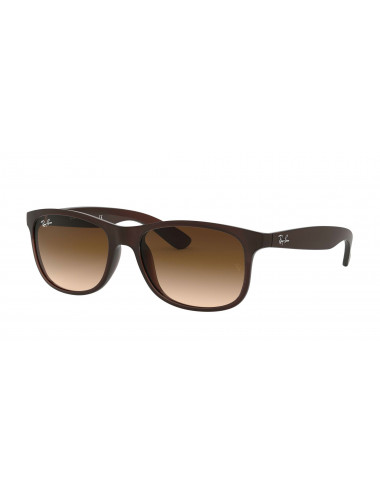 Ray Ban Andy RB4202 607313